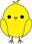 chick yellow (Kelly)